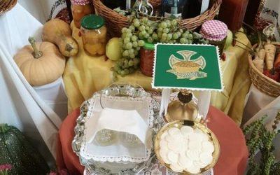 Terményáldást tartottunk Assisi Szent Ferenc emléknapján