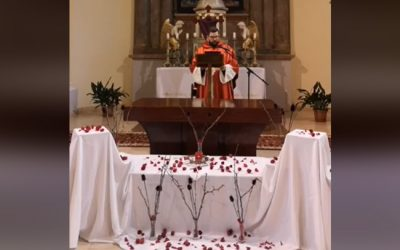 Online szentminse-közvetítés, 2020. április 10. Nagypéntek, csonkamise