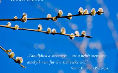 A szent pápa gondolata a virágvasárnapról